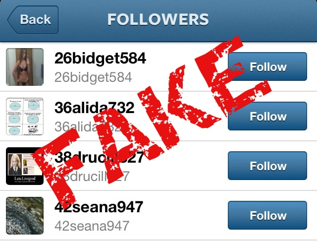 fake follower workengo
